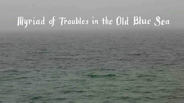 Tom Rosenthal - Myriad of Troubles in the Old Blue Sea
